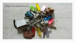 Schlüsselbund Hundesitter